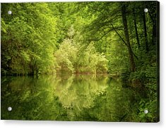In The Heart Of Nature Acrylic Print