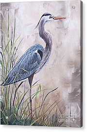 In The Reeds Blue Heron-36x48 Acrylic Print
