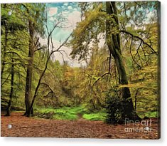 Acrylic Print featuring the photograph In The Woods by Leigh Kemp