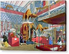 India Display Acrylic Print by Hulton Archive
