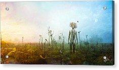 Internal Landscapes Acrylic Print
