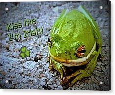 Irish Frog Acrylic Print