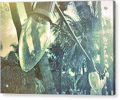 Island Greeting Acrylic Print by JAMART Photography