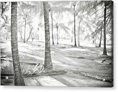 Island Life Acrylic Print