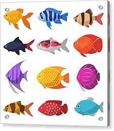 Isolated River Fish. Set Of Freshwater Acrylic Print
