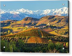 Italy, Piedmont, Langhe, Cuneo Acrylic Print by Peter Adams