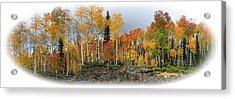 It's All About The Trees Acrylic Print