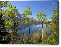 Acrylic Print featuring the photograph Jackson Lake by Sue Collura