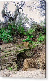 January Day  In The Vekol Wash Acrylic Print