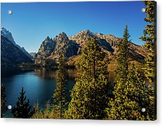 Acrylic Print featuring the photograph Jenny Lake by Pete Federico