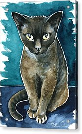 Joey - Devon Rex Cat Painting Acrylic Print