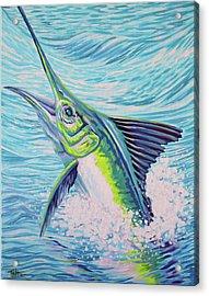 Jumping Marlin Acrylic Print