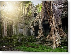 Acrylic Print featuring the photograph Jungle Temple 2 by Nicole Young