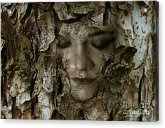 Just Another Night In The Tree Acrylic Print