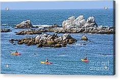 Kayakers Experience Bird Rock At Pacific Grove Acrylic Print