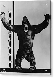 King Kong Acrylic Print by General Photographic Agency
