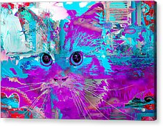 Kitty Collage Blue Acrylic Print