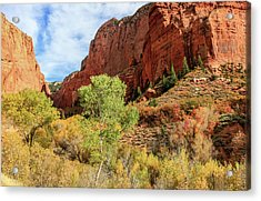 Kolob Canyon 1, Zion National Park Acrylic Print