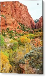 Kolob Canyon 2, Zion National Park Acrylic Print
