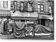 La Bella Ferrara Little Italy New York City Acrylic Print