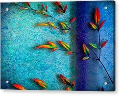 La Branche Acrylic Print