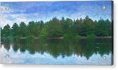 Lake And Trees Acrylic Print