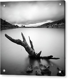 Lake Cuyamaca Stump And Clouds Acrylic Print by William Dunigan