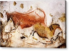 Lascaux Cow And Horse Acrylic Print