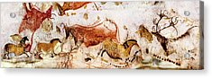 Lascaux Cows Horses And Deer Acrylic Print