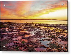 Last Light Acrylic Print by Fernando Margolles