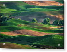 Late Afternoon In The Palouse Acrylic Print