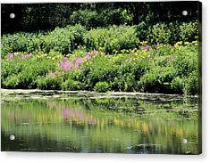 Lavender And Gold Reflections At Chicago Botanical Gardens Acrylic Print