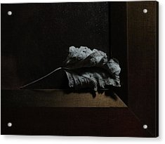 Acrylic Print featuring the photograph Leaf And Frame by Attila Meszlenyi