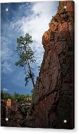 Leaning Over The Abyss Acrylic Print