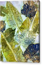 Leaves Of Nature Eco Dyed Print Acrylic Print