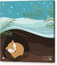 Let It Snow. Fox Sleeping In A Hole Acrylic Print