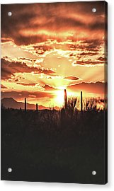 Light Of Arizona Acrylic Print