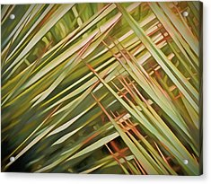 Acrylic Print featuring the mixed media Light Touch 12  by Lynda Lehmann