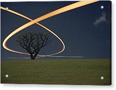 Light Trails Around Tree Acrylic Print