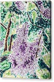 Lilac Dreams Acrylic Print