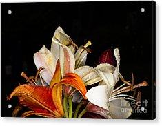 Lilies In A Garden Macro Acrylic Print