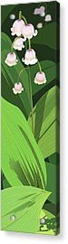 Lily Of The Valley Acrylic Print by Marian Federspiel