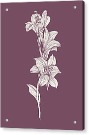 Lily Purple Flower Acrylic Print