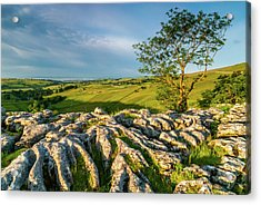 Limestone Pavement, Malham Cove Acrylic Print by David Ross