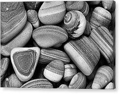 Lined Rocks And Shell Acrylic Print