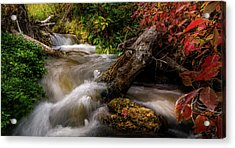 Acrylic Print featuring the photograph Little Deer Creek Autumn by TL Mair