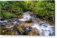 Acrylic Print featuring the photograph Little Deer Creek by TL Mair