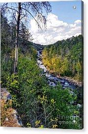 Acrylic Print featuring the photograph Little River Canyon Alabama by Rachel Hannah