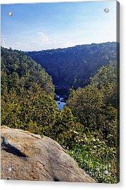 Acrylic Print featuring the photograph Little River Canyon Overlook Alabama by Rachel Hannah