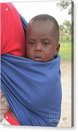 Acrylic Print featuring the photograph Lizauli Baby-namibia by PJ Boylan